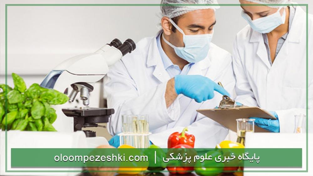 ارشد علوم و صنايع غذايي